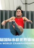 http://img41.imagevenue.com/loc137/th_46284_diving_world_champs_shanghai_2011_263_122_137lo.jpg
