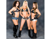 Extreme Expose (Kelly Kelly, Layla El & Brooke Adams): Fun Times 3 (x20 Pics)